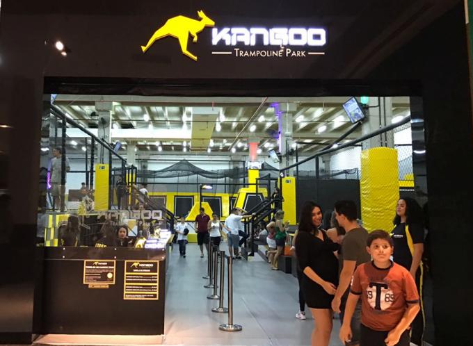 kangoo-1